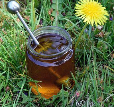 Löwenzahn Honig selber machen – 2 perfekte Rezepte